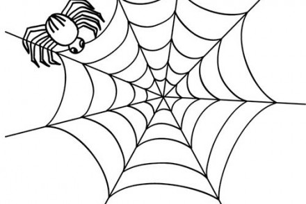 Coloriage-ARAIGNEE-HALLOWEEN-toile-daraignee-halloween.jpg