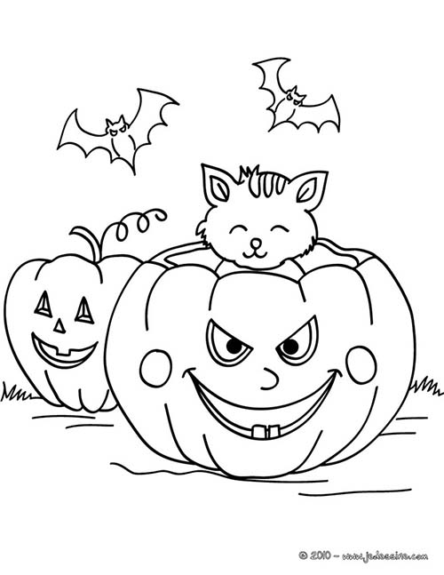 Coloriage-CHAT-HALLOWEEN-Chat-citrouille.jpg
