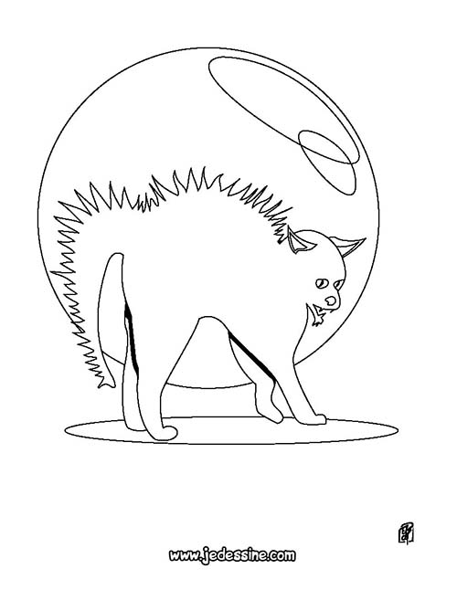 Coloriage-CHAT-HALLOWEEN-Chat-herisse.jpg