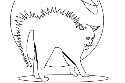 Coloriage-CHAT-HALLOWEEN-Coloriage-dun-chat-herisse.jpg