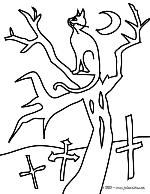 Coloriage chat halloween chat arbre a colorier - Dessin chat halloween ...