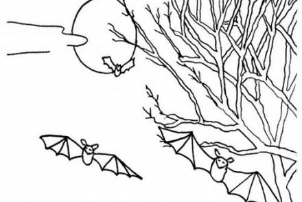 Coloriage-CHAUVE-SOURIS-HALLOWEEN-Coloriage-de-la-pleine-lune.jpg