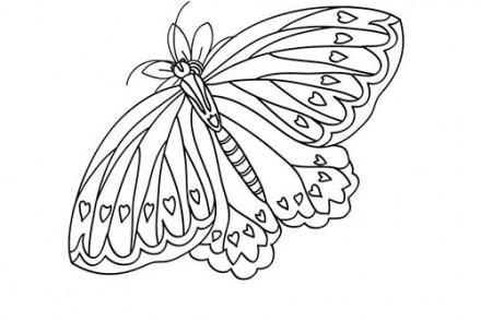Coloriage-Canon-PIXMA-Un-papillon-a-imprimer-avec-Canon-PIXMA.jpg