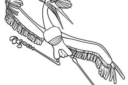 Coloriage-KUNG-FU-PANDA-Crane-le-maitre-Grue.jpg
