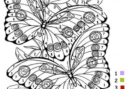 Coloriage-Magique-Papillon.jpg