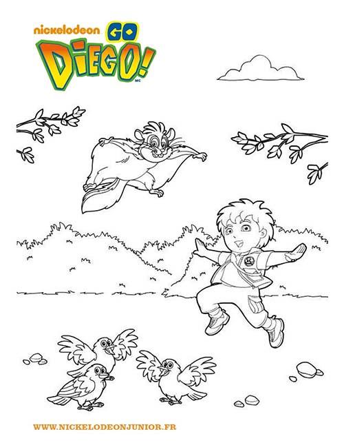 Coloriages-DIEGO-DIEGO-et-les-animaux-a-colorier.jpg