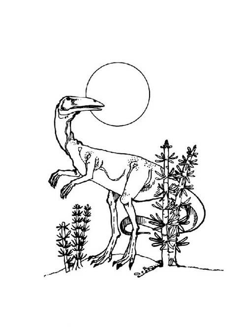 Coloriages-de-Dinosaures-Dinosaure-a-tete-doiseau.jpg