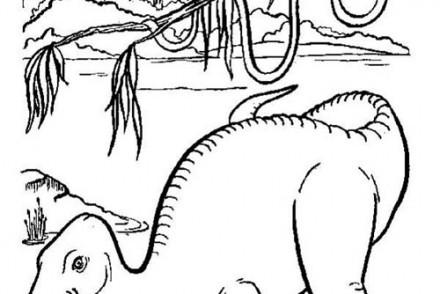 Coloriages-de-Dinosaures-Dinosaure-qui-mange-des-feuilles.jpg