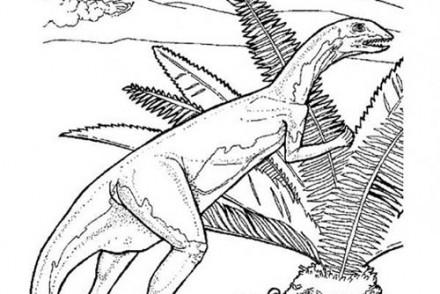 Coloriages-de-Dinosaures-Dinosaure-qui-se-cache.jpg