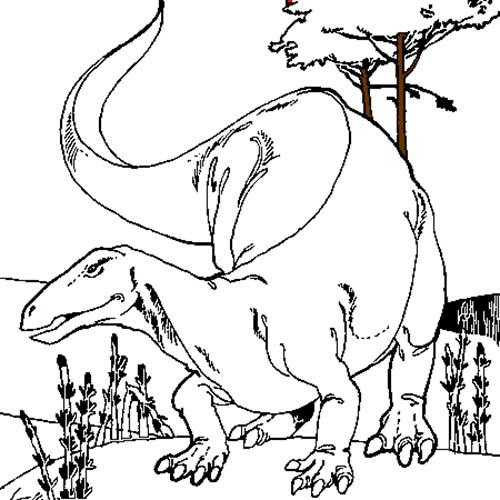 Coloriage de dinosaures dinosaures herbivores - Coloriage de dinosaures ...