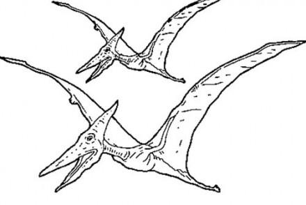 Coloriages-de-Dinosaures-Dinosaures-volants.jpg