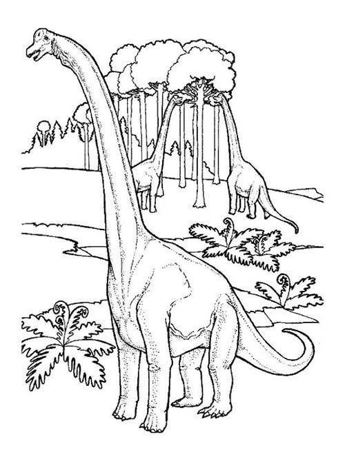 Coloriages-de-Dinosaures-Le-repas-des-brachiosaures.jpg