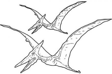 Coloriages-de-Dinosaures-Pterosaures.jpg