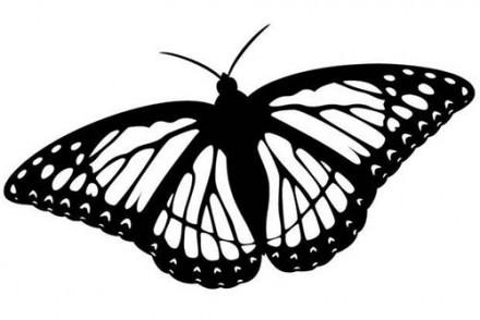 Coloriages-de-papillons-Coloriage-dun-papillon-N-11.jpg