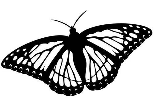 Coloriage de papillons coloriage d 39 un papillon n 11 - Coloriage d un papillon ...