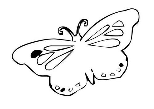 Coloriage de papillons coloriage d 39 un papillon n 12 - Coloriage d un papillon ...