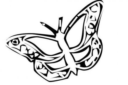Coloriages-de-papillons-Coloriage-dun-papillon-N-15.jpg