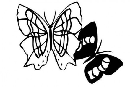 Coloriages-de-papillons-Coloriage-dun-papillon-N-2.jpg
