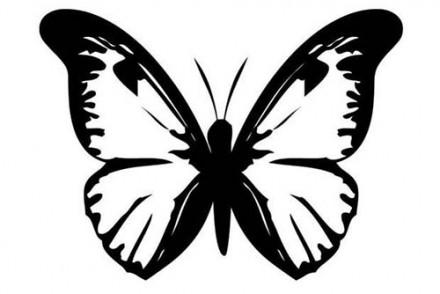 Coloriages-de-papillons-Coloriage-dun-papillon-N-4.jpg