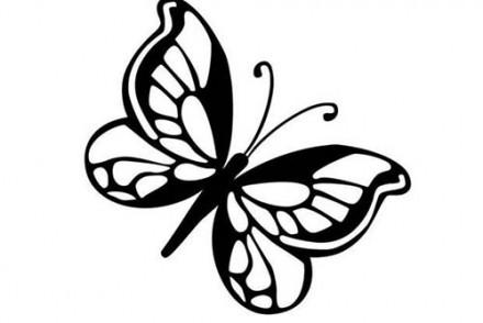 Coloriages-de-papillons-Coloriage-dun-papillon-N-8.jpg