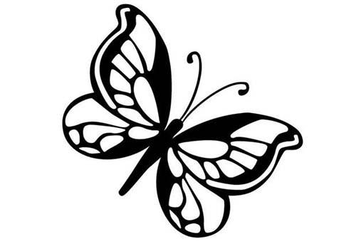 Coloriage de papillons coloriage d 39 un papillon n 8 - Dessin d un papillon ...