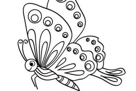 Coloriages-de-papillons-Joli-petit-papillon.jpg