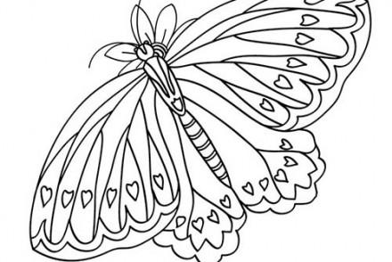 Coloriages-de-papillons-Papillon-a-coeurs.jpg