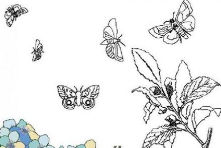 Coloriages-de-papillons-Papillons-qui-volent.jpg
