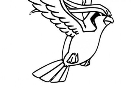 dessin-a-imprimer-du-Pokemon-Roucoups.jpg